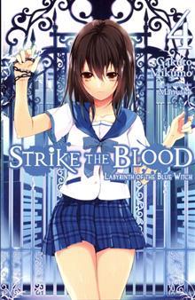 STRIKE THE BLOOD LIGHT NOVEL VOL 04