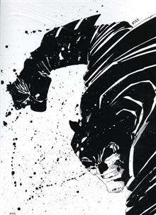 ABSOLUTE DARK KNIGHT HC