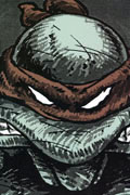 TMNT COLLECTED BOOK VOL 1 TP