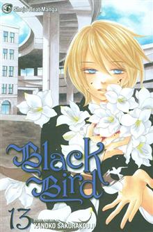 BLACK BIRD GN VOL 13