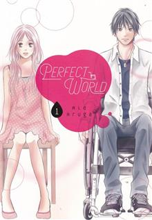 PERFECT WORLD GN VOL 01 (C: 0-1-0)