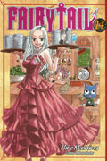 FAIRY TAIL GN VOL 14
